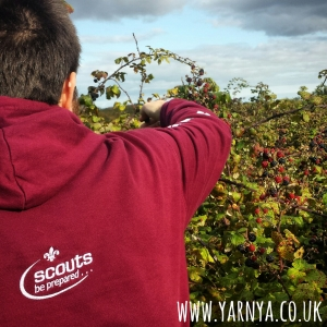 Sunday Sevens (13th September 2015) www.yarnya.co.uk berry picking autumn