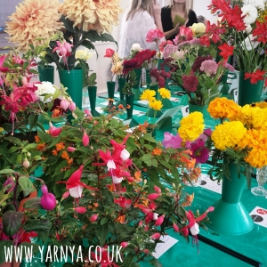 Sunday Sevens (13th September 2015) www.yarnya.co.uk horticultural show