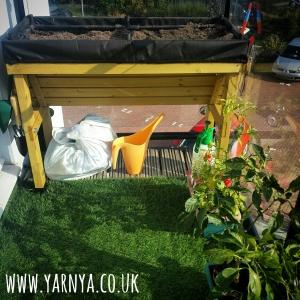 Sunday Sevens (4th October 2015) www.yarnya.co.uk garden vegetables