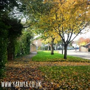 Sunday Sevens (1st November 2015) www.yarnya.co.uk autumn leaves